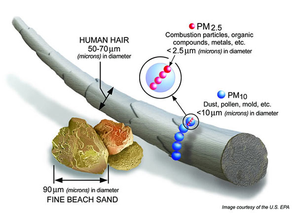 Comparison of dust to a human hair and grains of sand